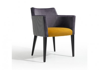 FAUTEUIL GASTRO LUXE